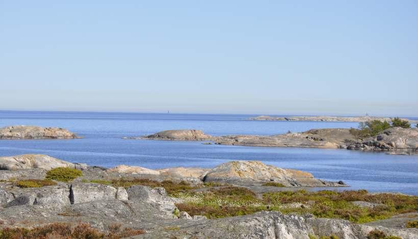 Bada bastu i Bullerö Naturreservat och njut av vacker skärgårdskarg natur och magisk utsikt.