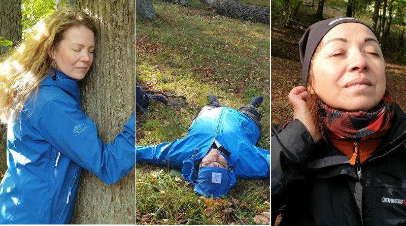 Kollage av tre bilder på kvinnor som skogsbadar: en av dem blundar och kramar ett träd; i mitten en kvinna som ligger ner på marken med armarna utsträckta; sist en kvinna som blundar och vänder ansiktet mot solen.