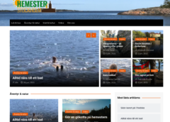 Skärmdump av sajten Hemester i Stockholm.